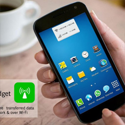Usage Widget
